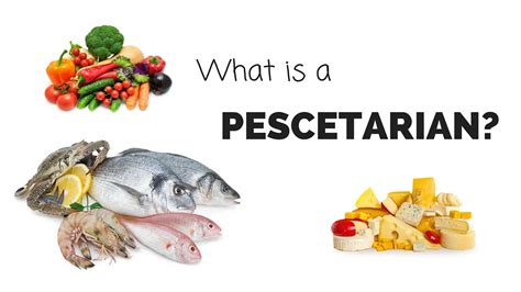 What Is A Pescetarian?  Youtube. Cern Httpd 3 0b Vax Vms Oasis Heating And Air. Masters In Education Leadership Online. Host My Wordpress Site Call Center Monitoring. Spring Ford Area School District. Shriners Hospital In Sacramento. Accept Business Credit Card 2 Seater Pontiac. Social Work Qualifications Bryan College Mba. Best Electrical Engineering Schools In The World