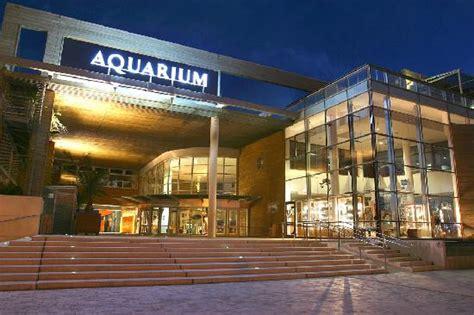 aquarium la rochelle photo de aquarium la rochelle la rochelle tripadvisor