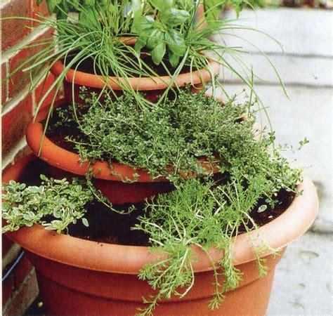 une v 233 randa un bon refuge pour vos plantes