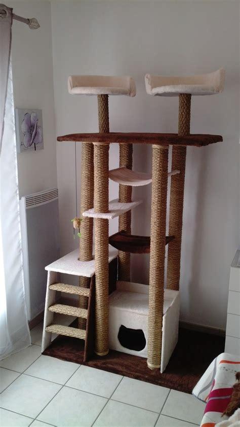arbre 224 chat palette bois