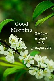 50 Good Morning Images With Flowers Quotes Quoteambition