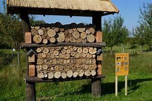 Haus Finden Tipps : insektenhotel selbst bauen tipps und tricks lbv ~ Markanthonyermac.com Haus und Dekorationen