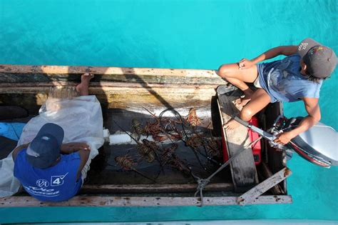 Lobster Boat Docking by Sailing To Colombia Via The San Blas Islands