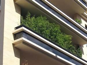 Gräser Kübel Terrasse : die besten 25 bambus im k bel ideen auf pinterest ~ Markanthonyermac.com Haus und Dekorationen