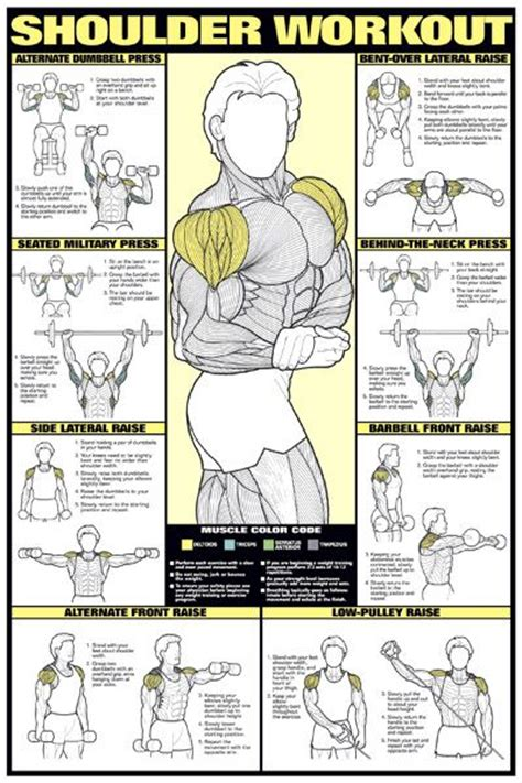 at home chest exercises shoulder workout wall chart professional strength