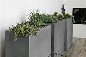 Pflanzen Kübel Beton : pflanzk bel f r innen schicke wohnaccessoires f r den innenbereich ~ Markanthonyermac.com Haus und Dekorationen